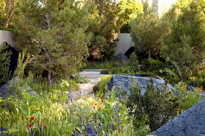 How to Become a Professional Garden Designer?